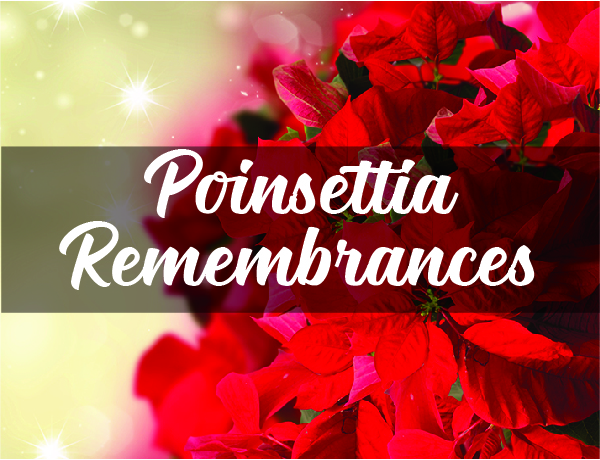 poinsettias remembrance